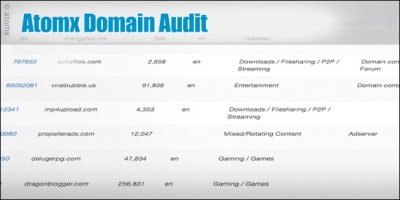 Atomx blog: domain-audit